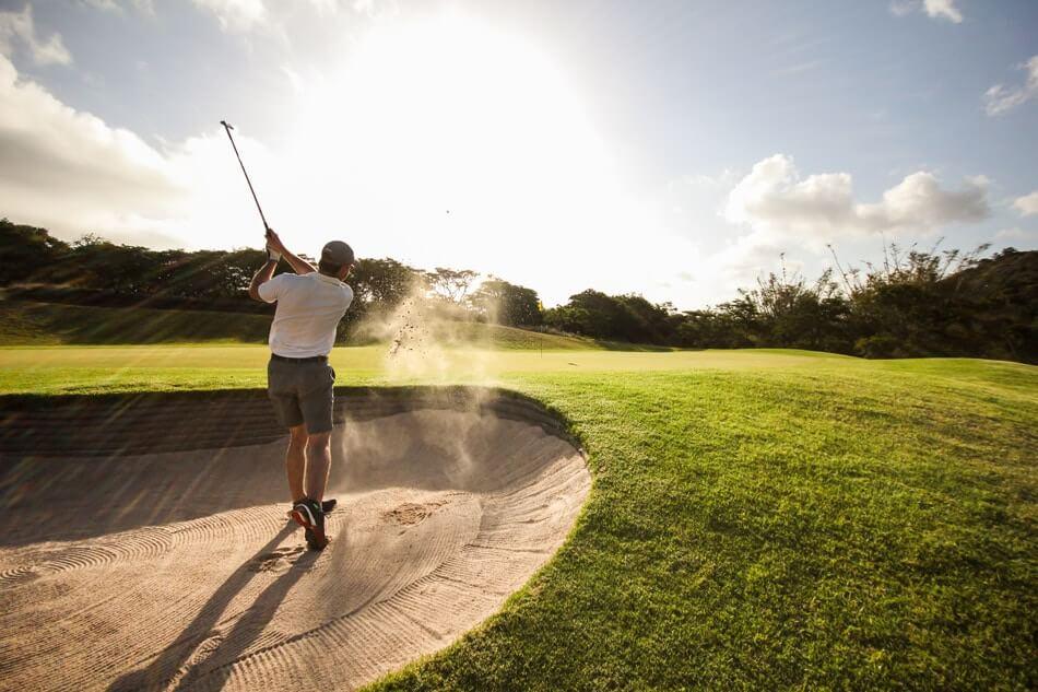 (3) Golfer's Paradise